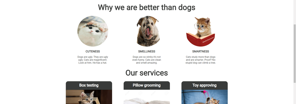 If cats made a website - image 2 - student project