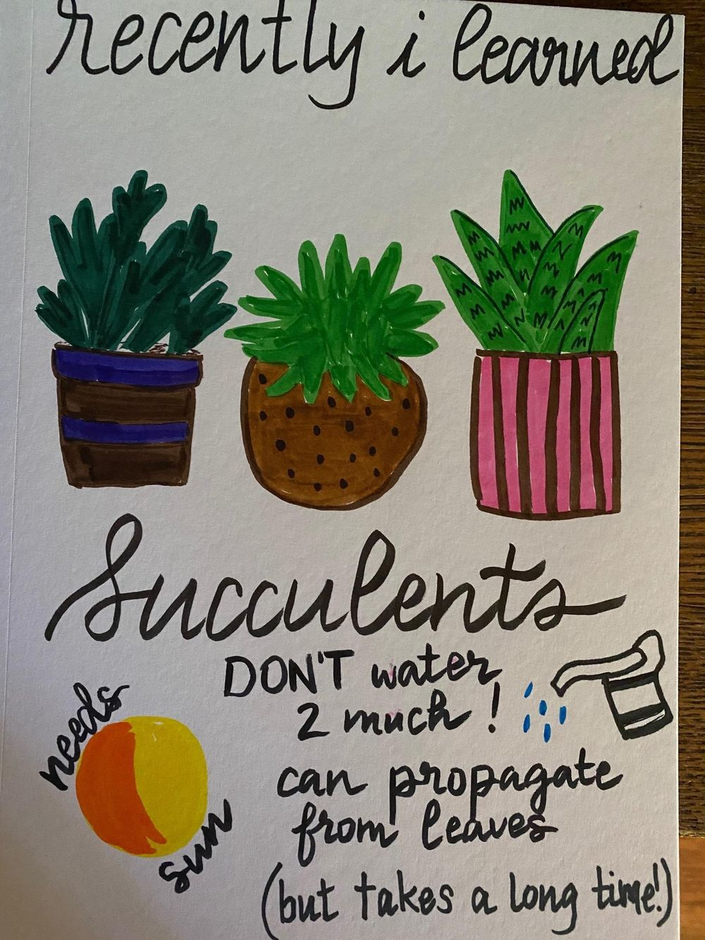 Illustrated Journaling - 14 Days of Prompts - image 6 - student project