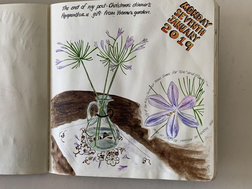 Sketchbook pages - image 1 - student project