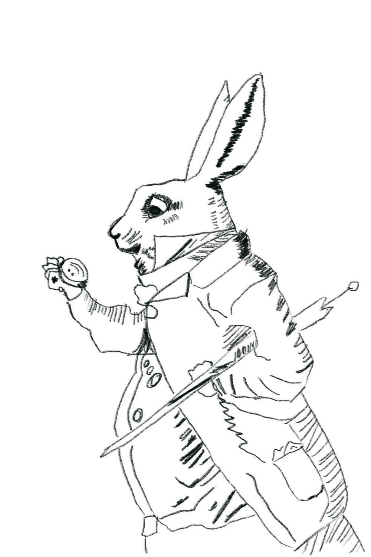 Rabbit - image 1 - student project