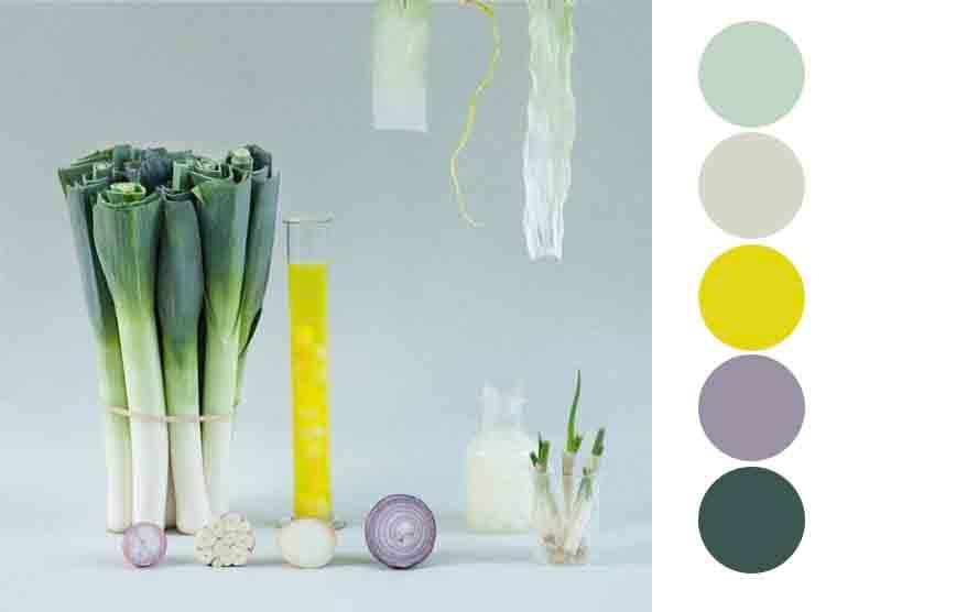 Flower Colour palette - image 1 - student project