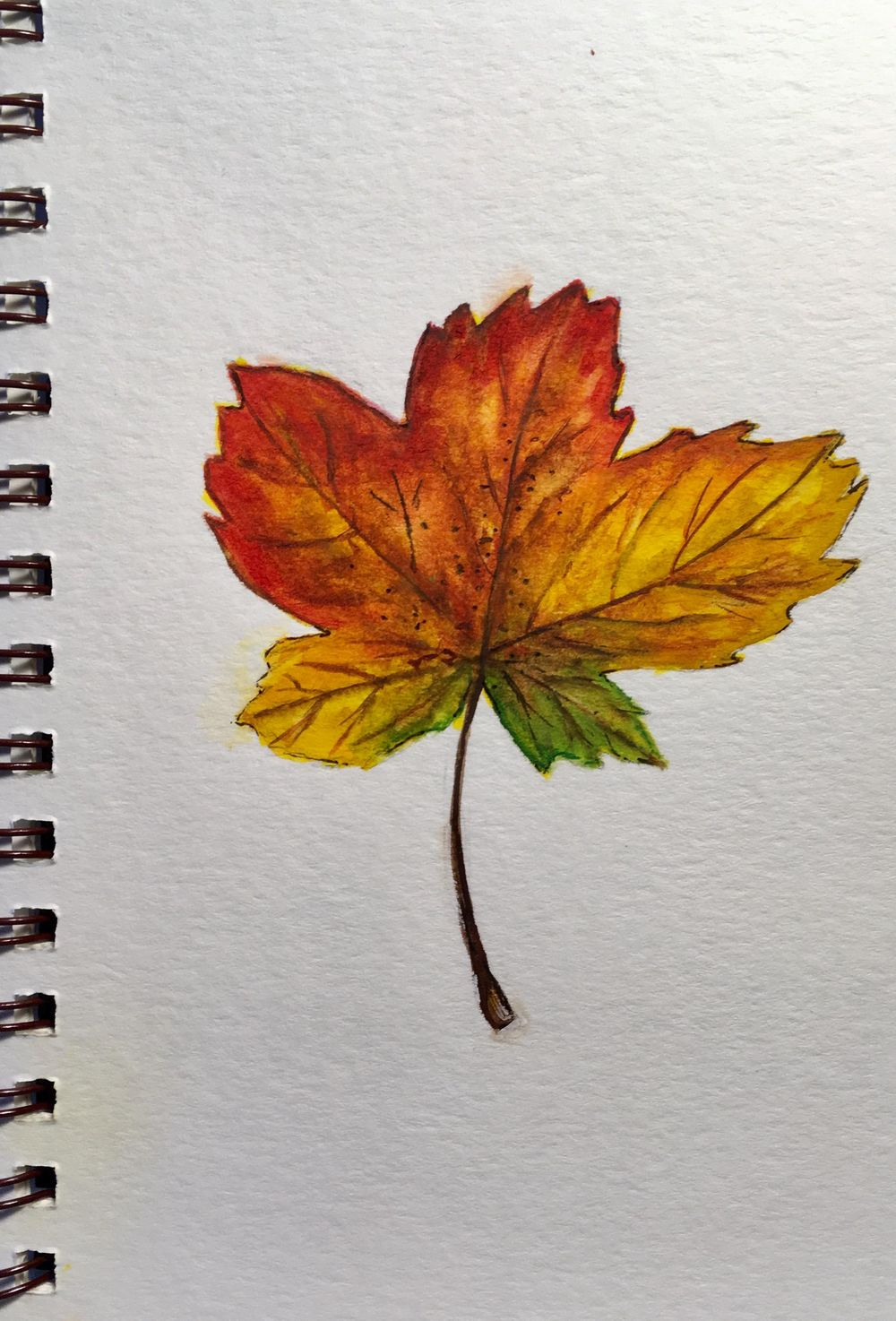Autumn Leafs and Branches - image 4 - student project
