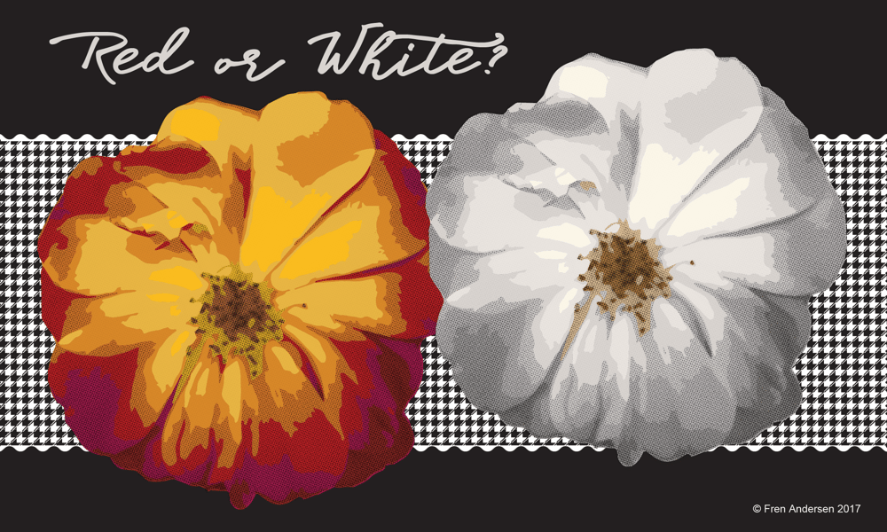 Red or White? - image 1 - student project