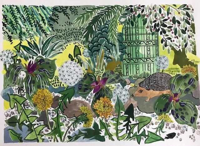 Hedgehog in the Garden - image 2 - student project