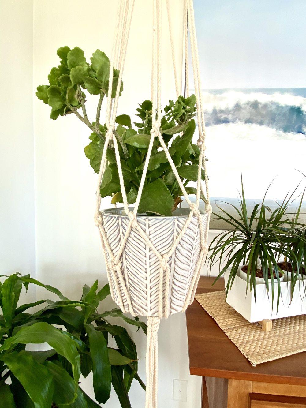 Macrame Plant Hanger - image 3 - student project