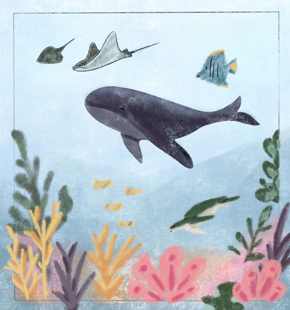 Underwater world - image 1 - student project