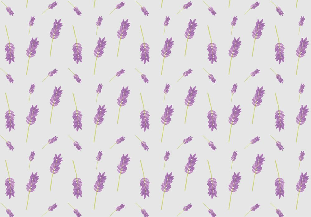 Lavender pattern - image 2 - student project
