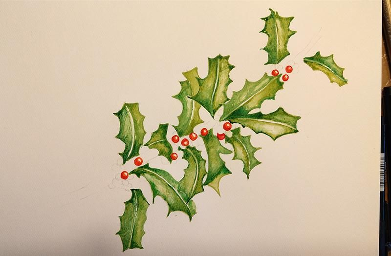Stechpalme - Holly & Berries - image 3 - student project