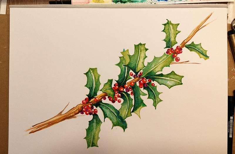 Stechpalme - Holly & Berries - image 5 - student project