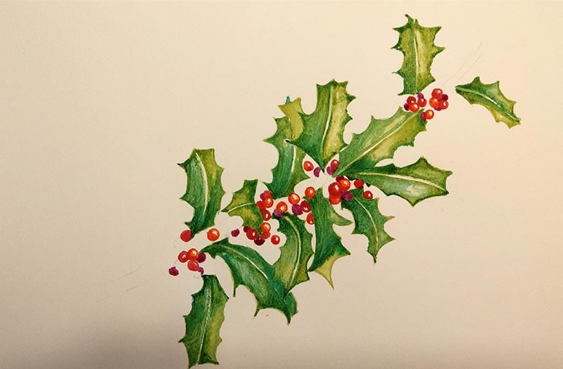Stechpalme - Holly & Berries - image 4 - student project