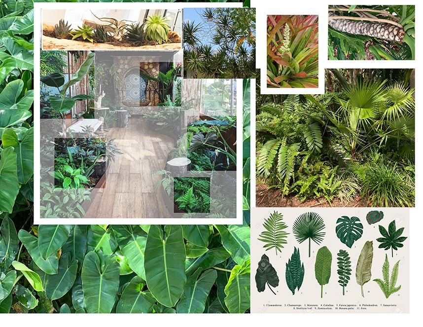 Tropical Foliage - image 1 - student project