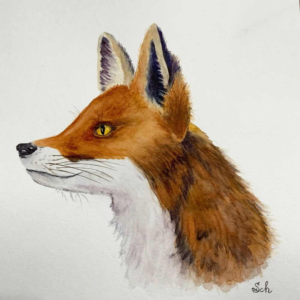 Painting Animal Textures - Fur - image 1 - student project
