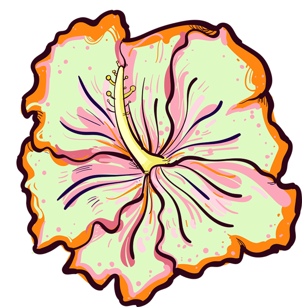 Hibiscus - image 3 - student project