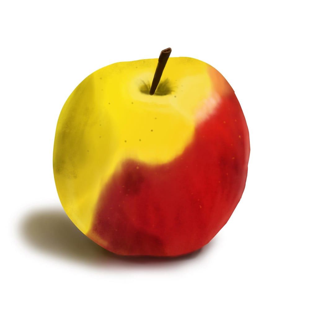 Procreate Apple - image 1 - student project