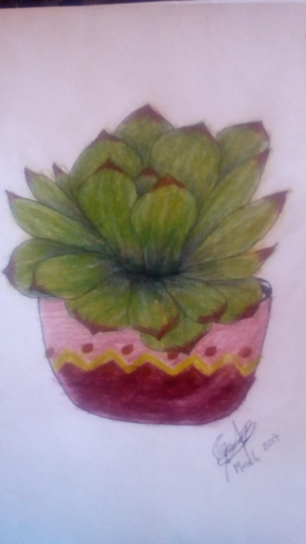 Succulent - image 4 - student project