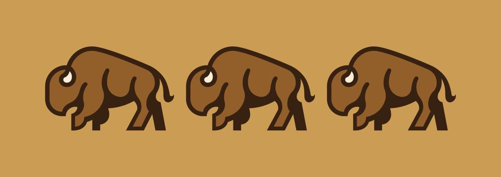 Bison Logo - image 6 - student project