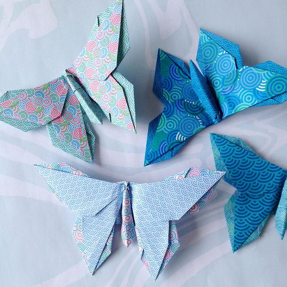 Circular Pattern Butterflies - image 5 - student project