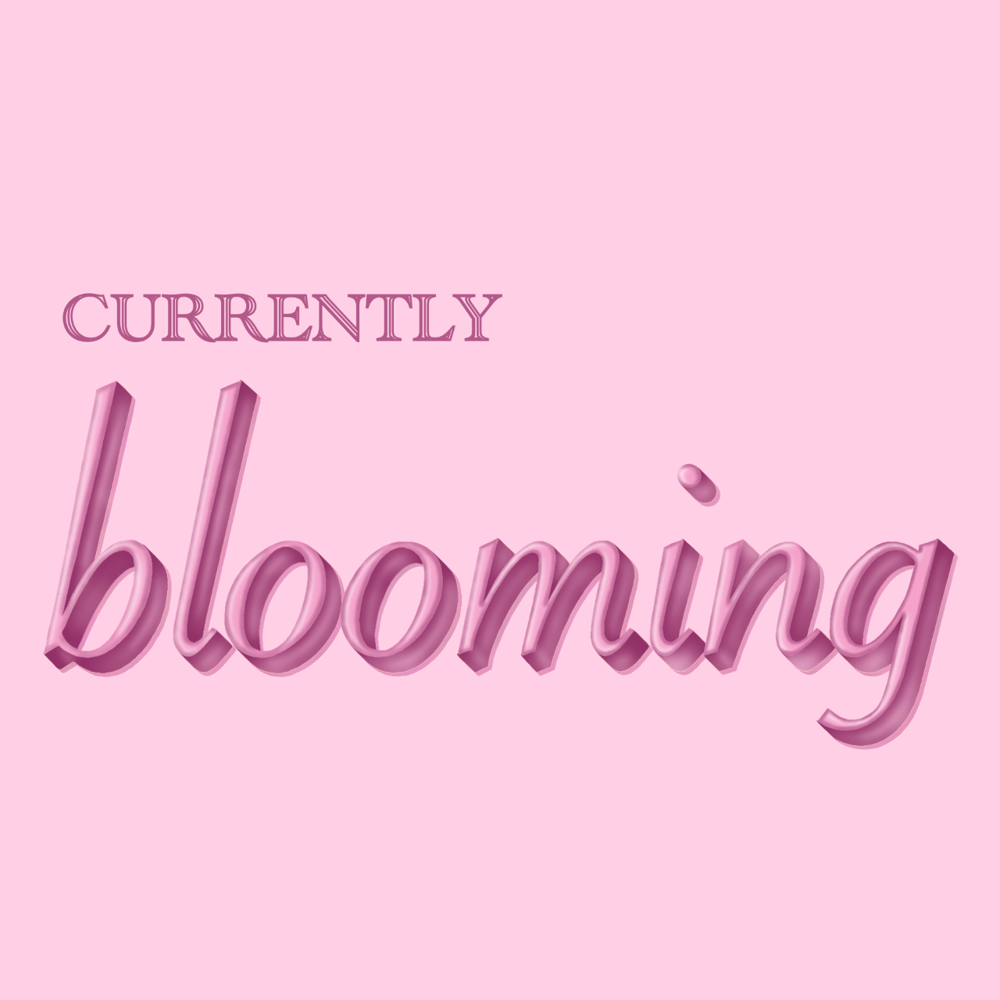 currently BLOOMING - image 1 - student project