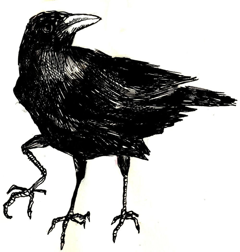 Three crows - image 2 - student project