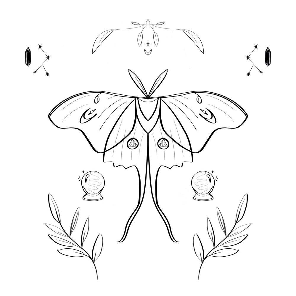 Mystical Moth - image 8 - student project