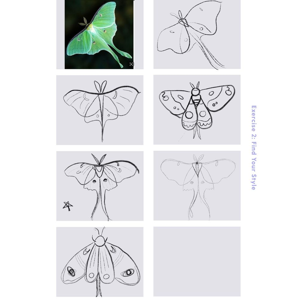Mystical Moth - image 5 - student project