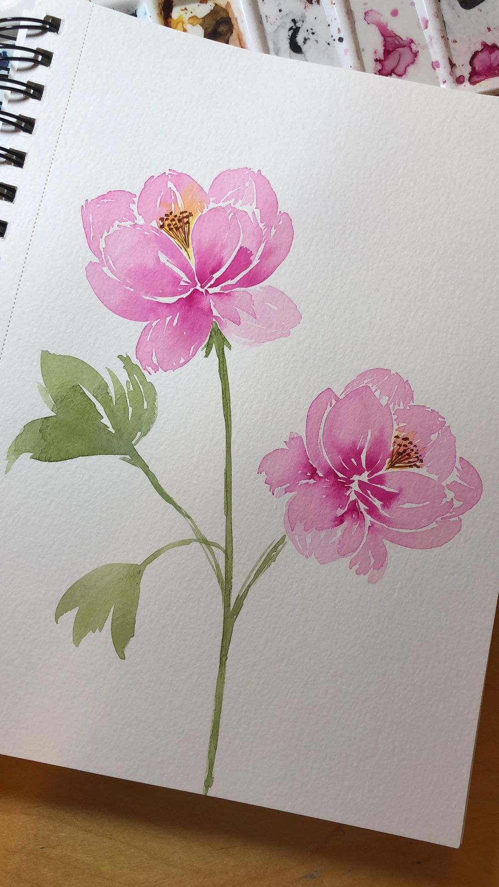 Peonies with Joly - image 2 - student project
