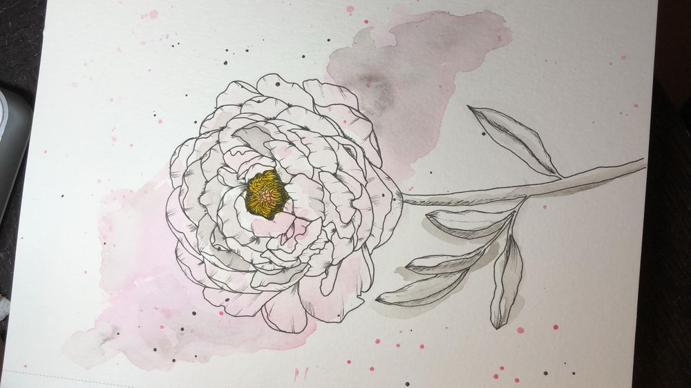 Modern Watercolor Peony with Isa - image 1 - student project