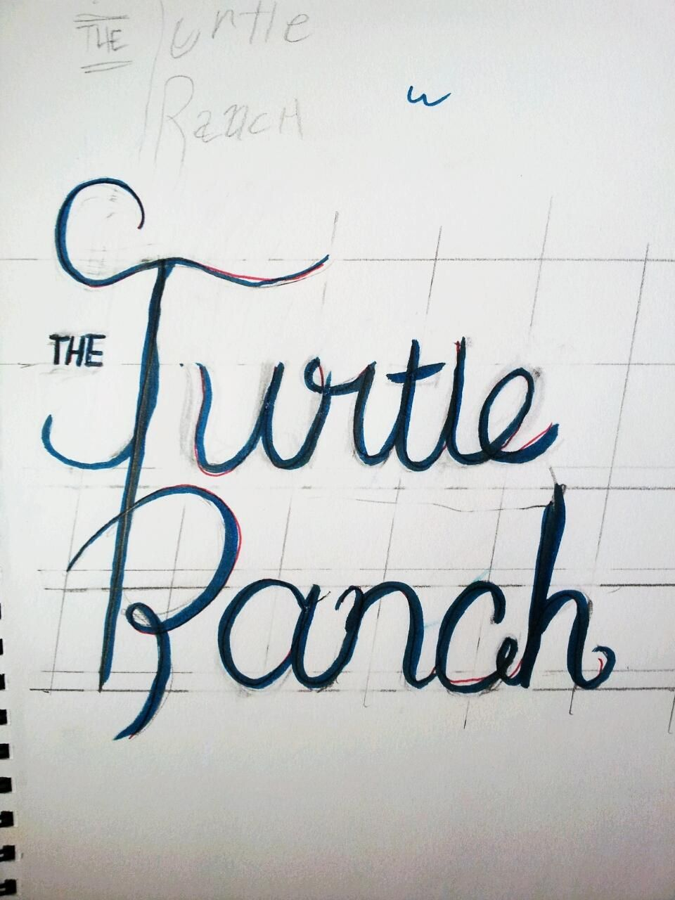 The Turtle Ranch - image 2 - student project