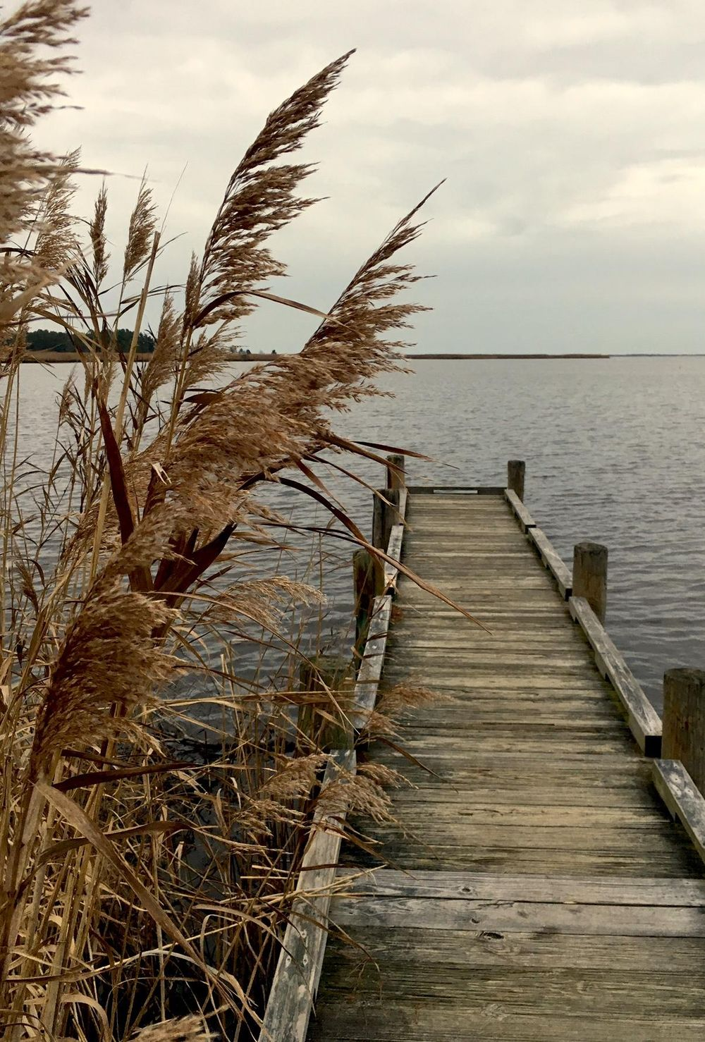 Back Bay, Virginia at Sunrise - image 1 - student project