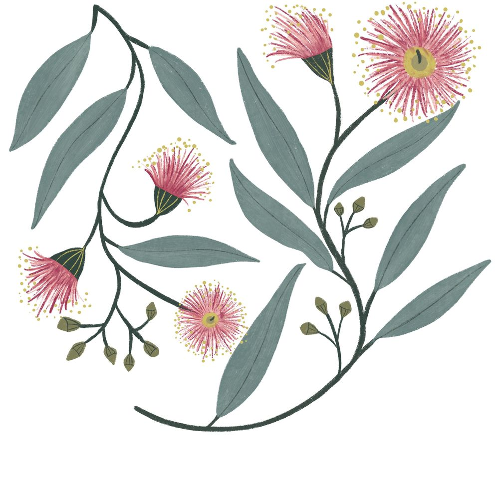 Flowering Gum - image 1 - student project