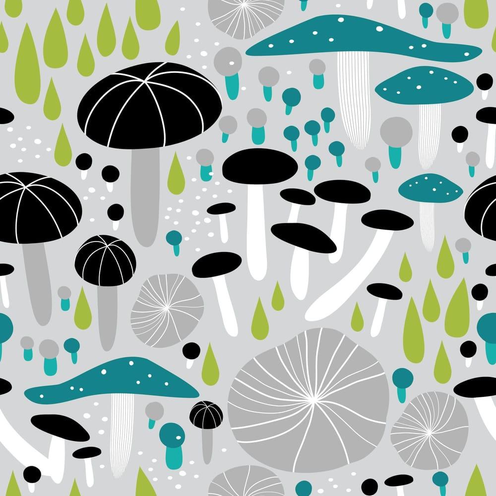 Mushroom Medley - image 2 - student project