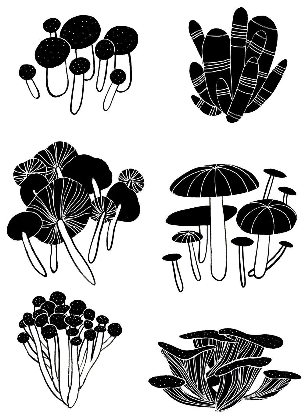Mushroom Medley - image 7 - student project