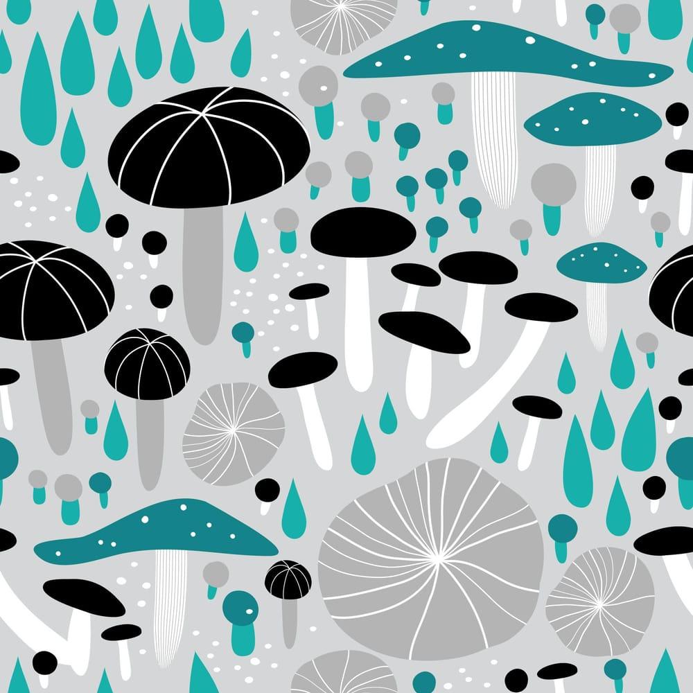 Mushroom Medley - image 4 - student project