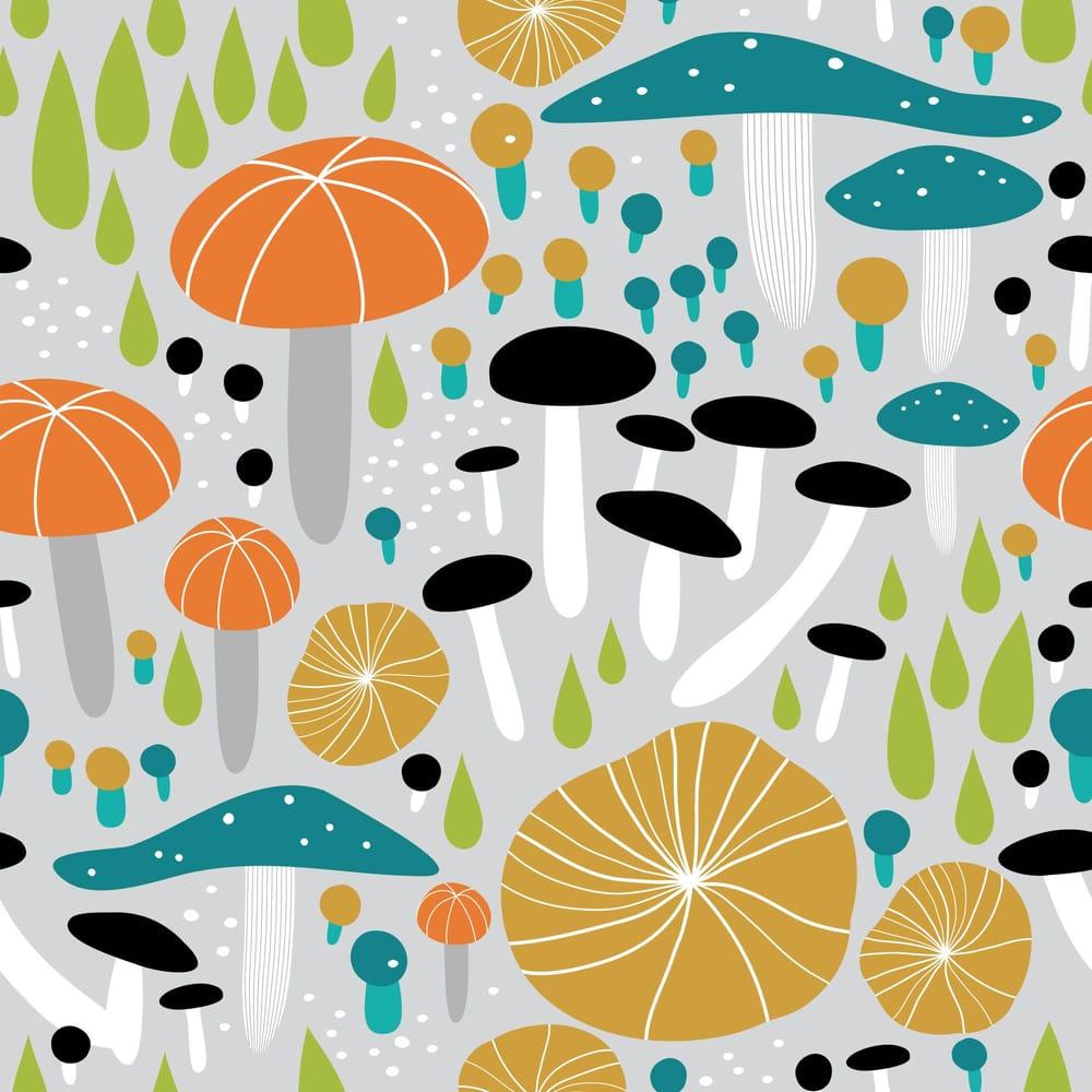 Mushroom Medley - image 3 - student project
