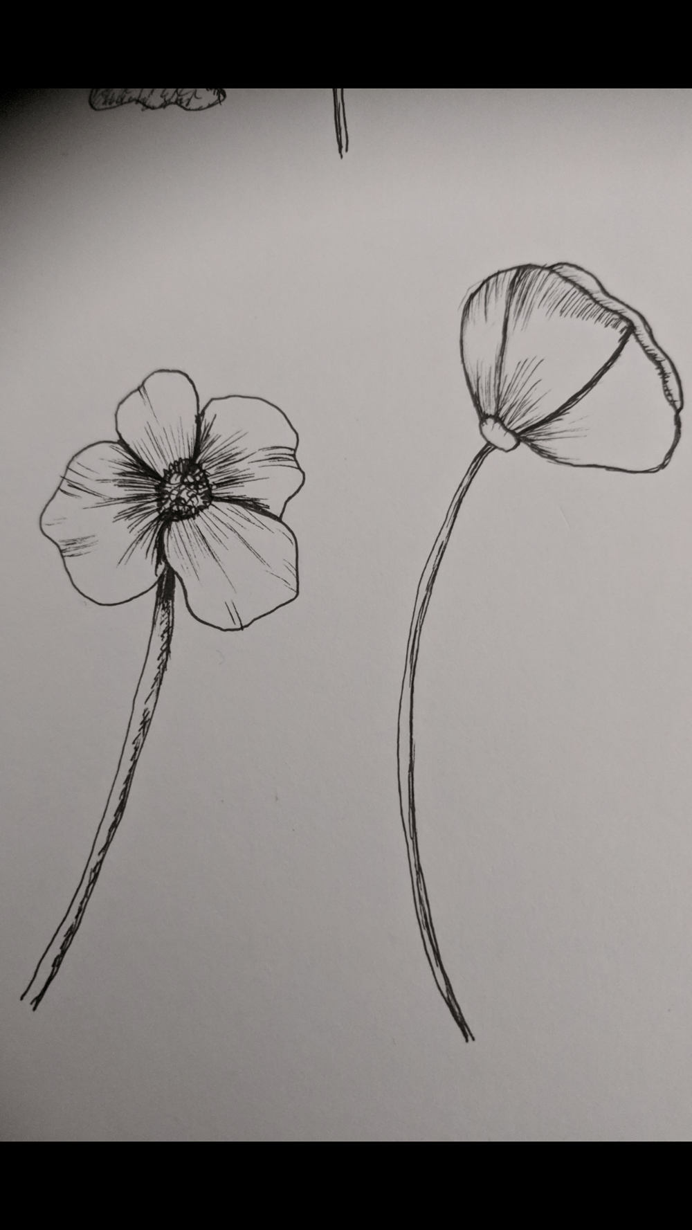 Fun Flowers - image 2 - student project