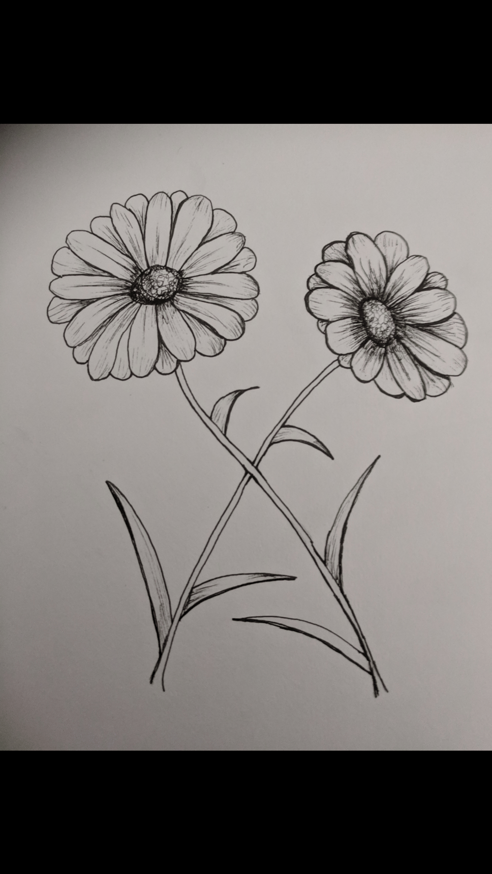 Fun Flowers - image 1 - student project