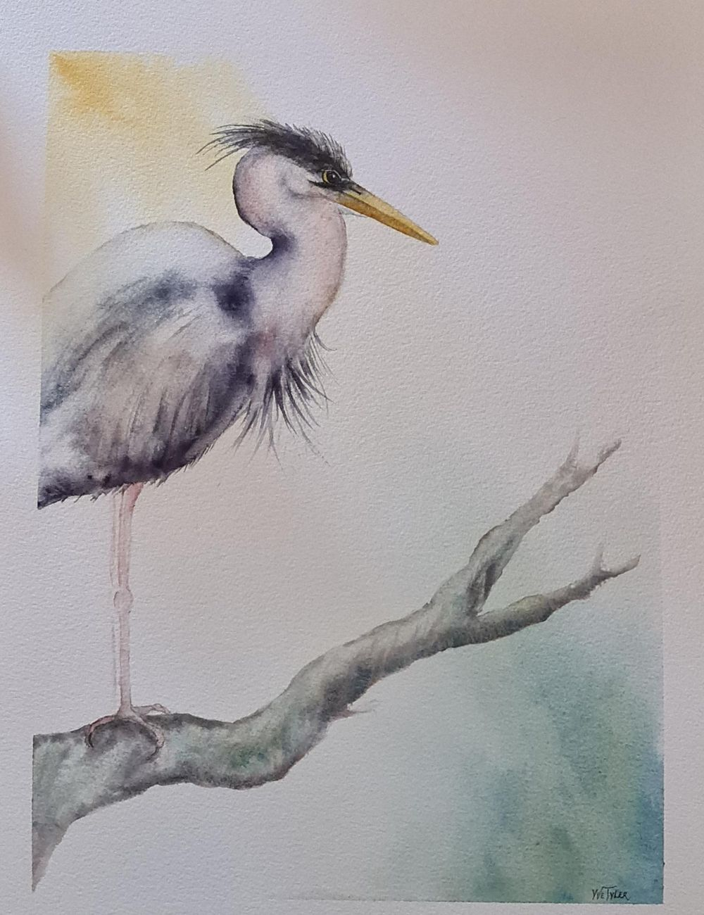 Harry the Heron - image 1 - student project