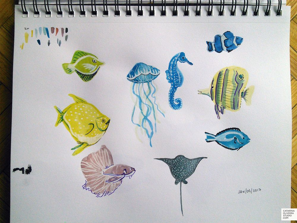 Sea Creatures & Cacti - image 2 - student project