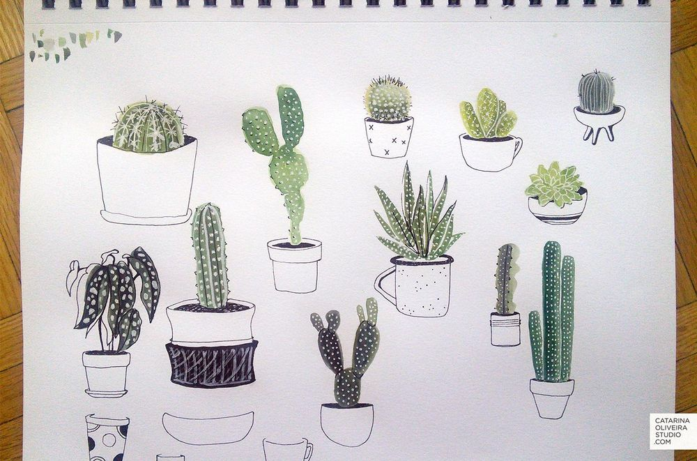 Sea Creatures & Cacti - image 5 - student project