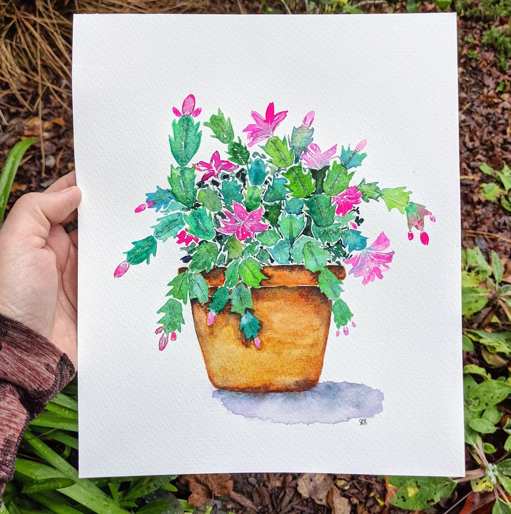 Holiday Cactus - image 2 - student project