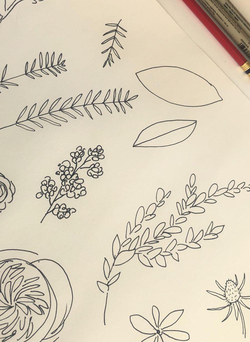 King Protea & Eucalyptus - image 3 - student project