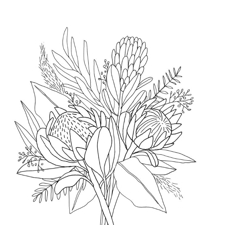 King Protea & Eucalyptus - image 5 - student project