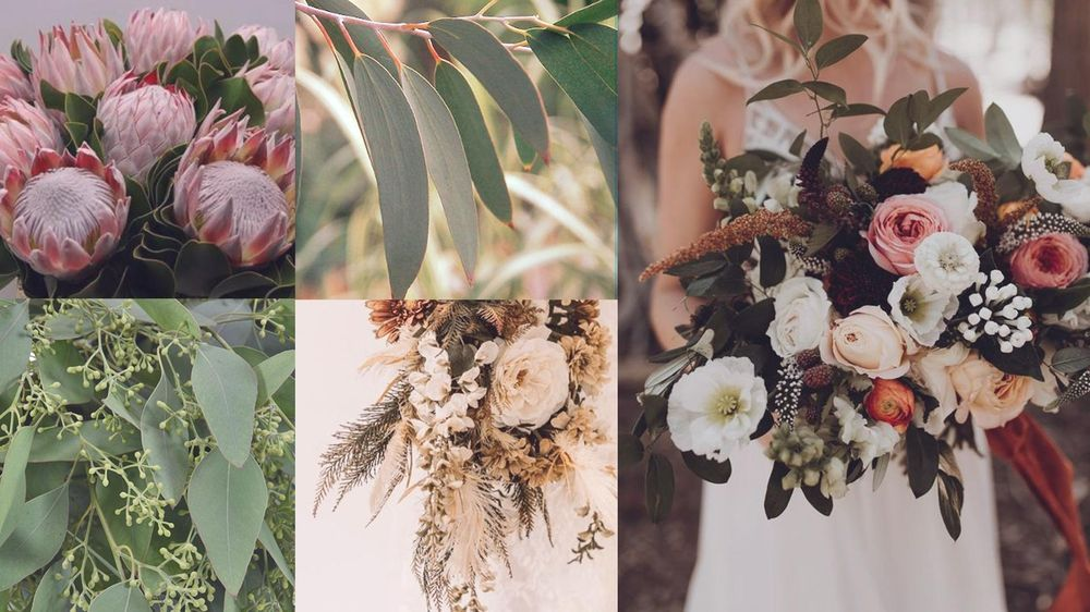 King Protea & Eucalyptus - image 1 - student project