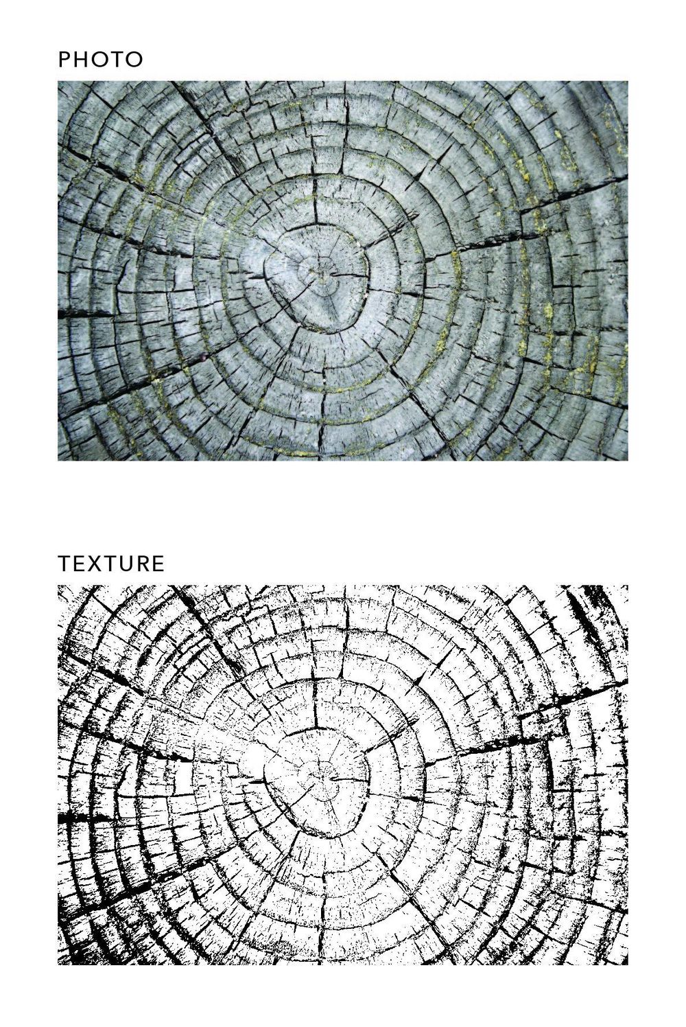 textures! - image 1 - student project
