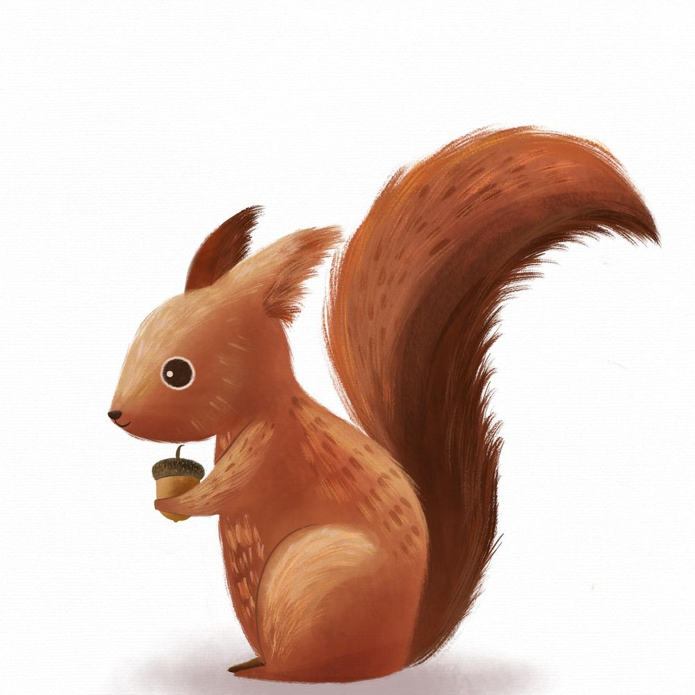 Cute Red Squirrel - image 1 - student project