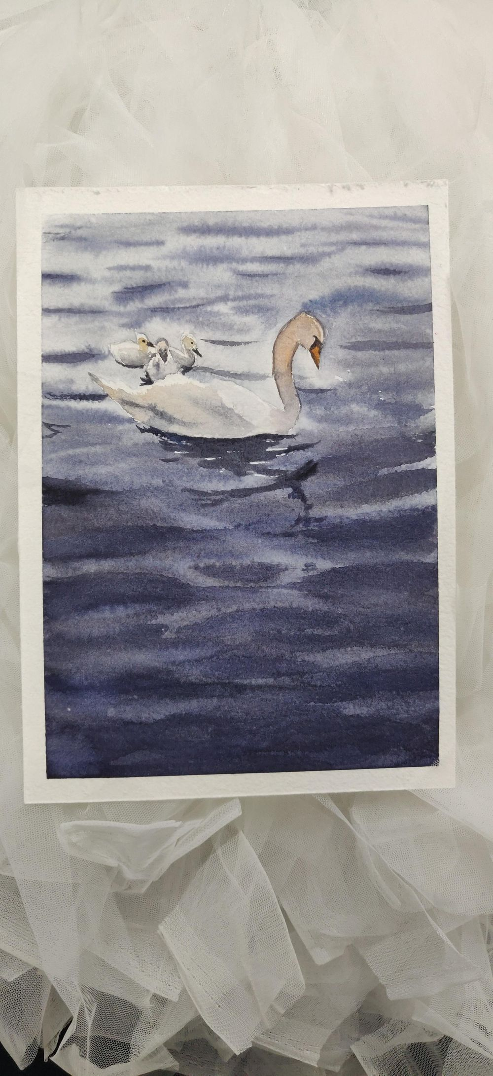 Swan Lake - image 1 - student project
