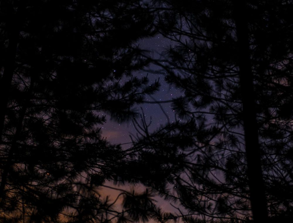 Outdoor Photography: Night - image 3 - student project