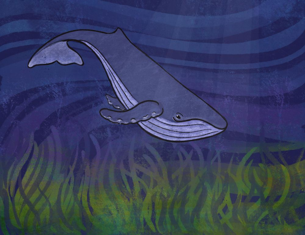 Humpback Whale Using Mask Technique - image 1 - student project
