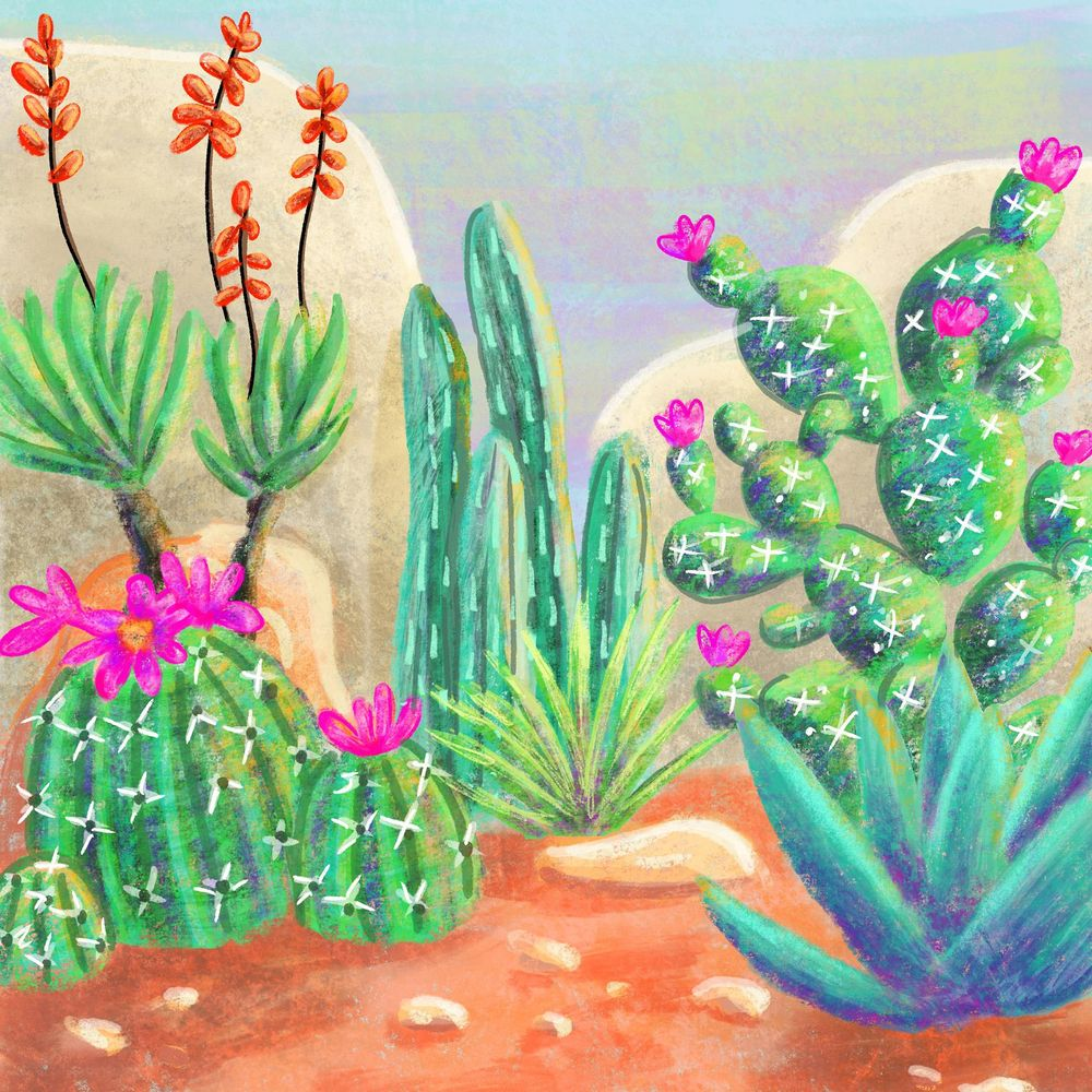 Cactus Garden - image 1 - student project