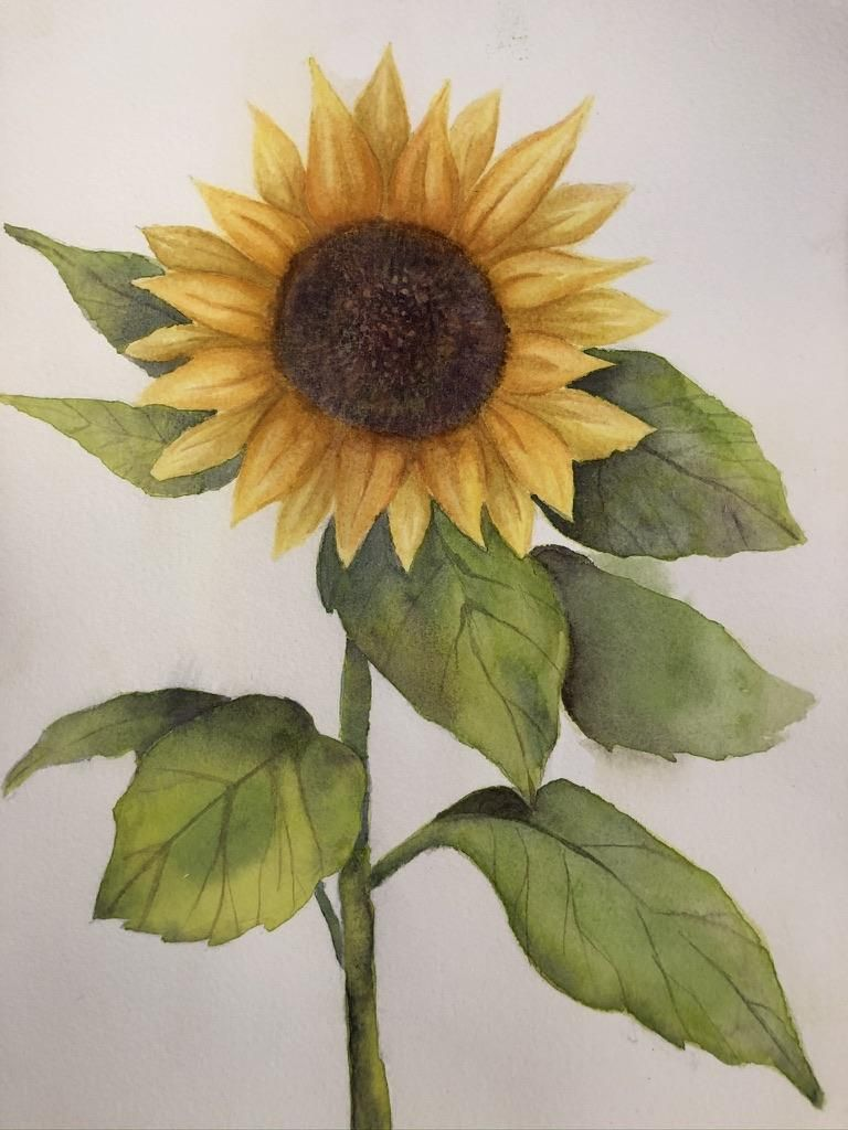 Watercolor Flower - image 1 - student project